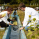 Internship/Thesis Opportunities at Helmhotz Centre for Environmental Research, Germany